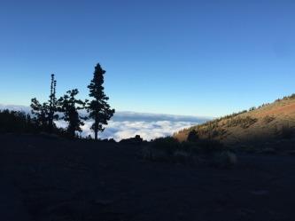Teide (10)
