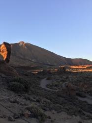 Teide (7)